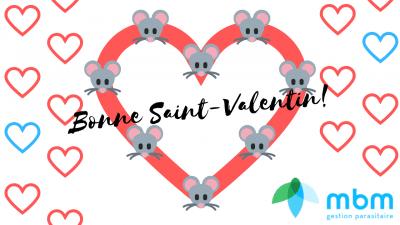 saint-valentin-2019-mbm