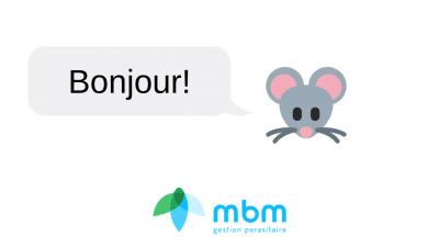 en-francais-mbm